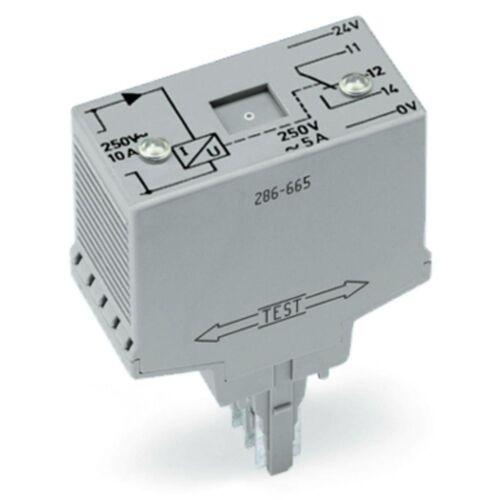 286-665 Áramfigyelő modul Relé 1 váltóérintkezővel (1u) Beáll, világosszürke